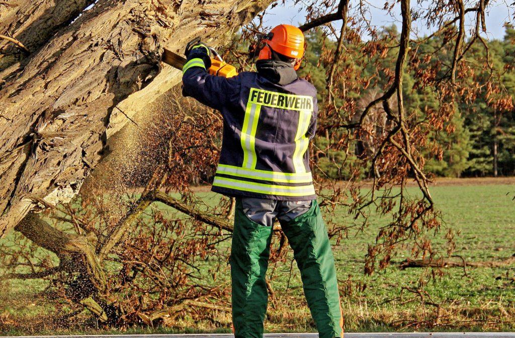 Baumarbeiten Feuerwehr